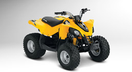 can am ds 90